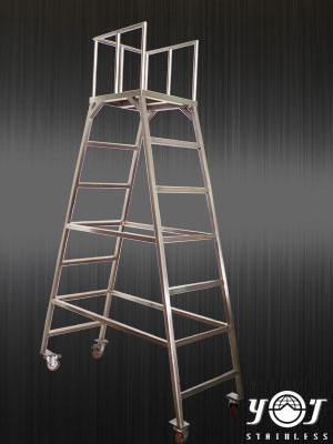 Stainless steel ladder-TJ-140305-YJ stainless